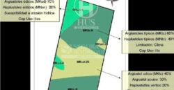 Campo de 11795 en Oran (Salta)