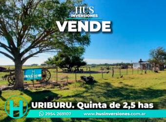 Quinta de 2,5 has -URIBURU