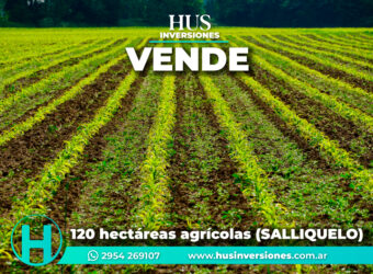 120 hectáreas agrícolas (SALLIQUELO)