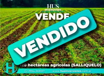 VENDIDO -120 hectáreas agrícolas (SALLIQUELO)